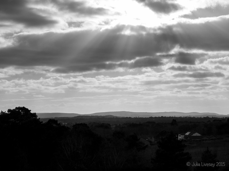 Monochrome view over Poole