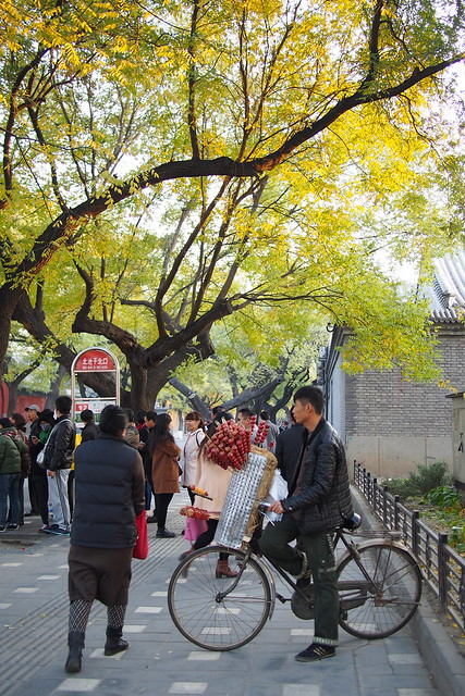 candied fruit seller, hutong, Beijing, China