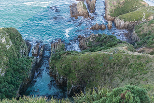 صورة Nugget Point Lighthouse قرب Kaka Point. newzealand lighthouse southisland otago southland nuggetpoint