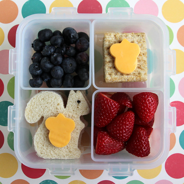 Preschool Squirrel Bento #443