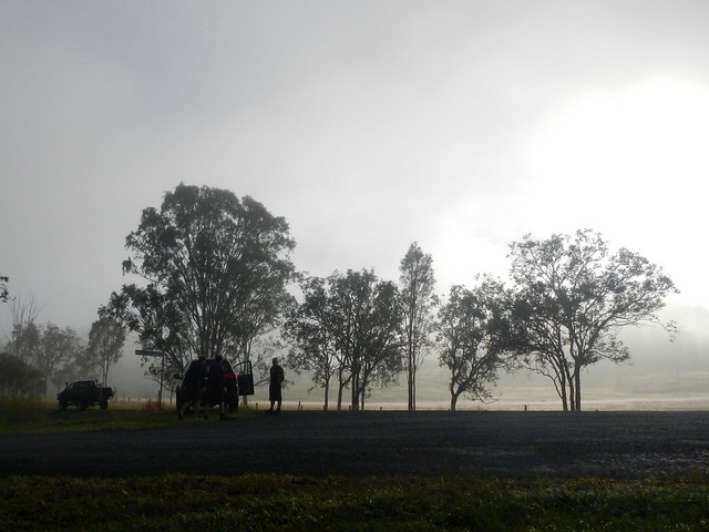 Mornng Mist