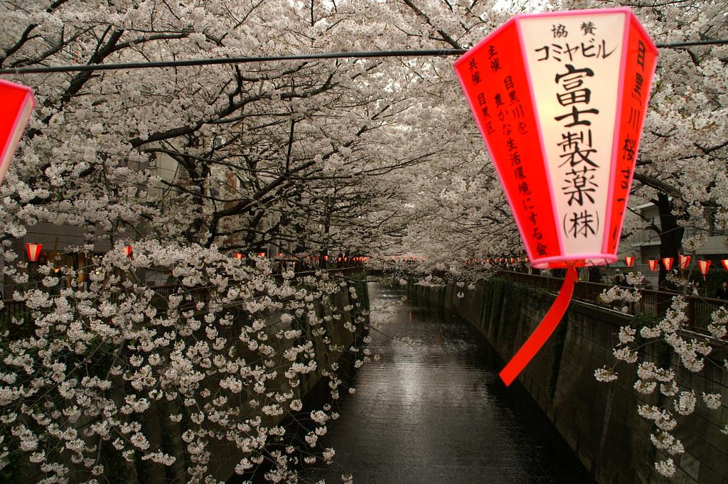 Tokyo's Coolest Neighborhoods Naka-Meguro - Tokyo - Japan