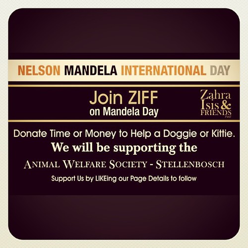 Join ZIFF - Zahra Isis and Friends Fund - Help a Doggie or Kittie. Donate your Time or Money to AWSS - Animal Welfare Society Stellenbosch #mandeladay #nelsonmandela #donate #welfare #ziff #awss #zahraisisandfriendsfund #Phonto AppStore.com/Phonto