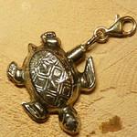 gouden ashanger schildpad