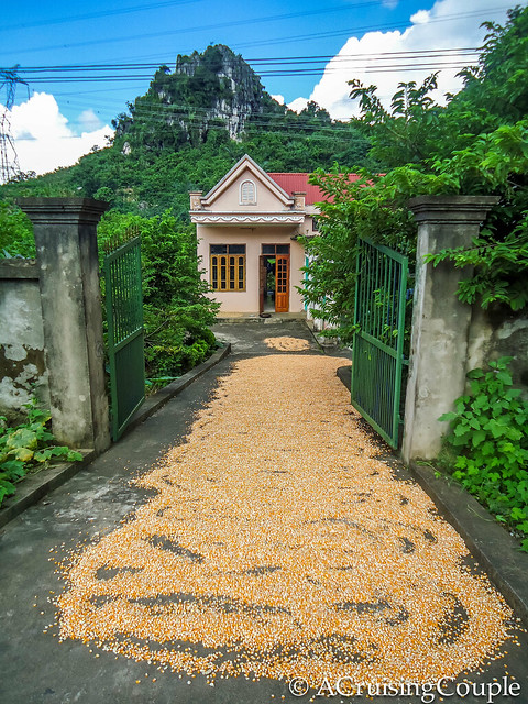 Vietnamese Home
