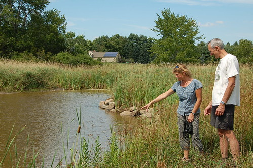 NRCS District Conservationist Rita Thibodeau (left) points out minnows swimming in a pond that was part of Peter Talmage's wetland restoration project. (Photo by Jonathan Tokarz, NRCS intern)
