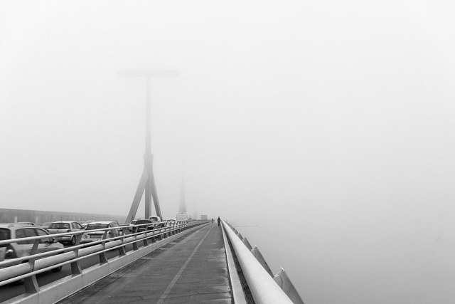 Budapest - the Rakoczi bridge in fog 8