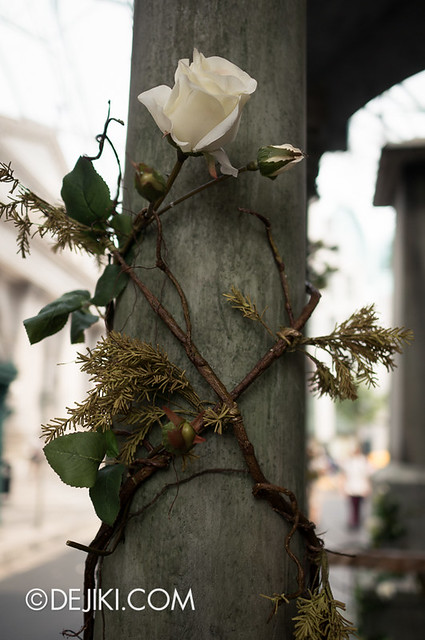 HHN3 Before Dark 2 - Attack of the Vampires - A lone rose