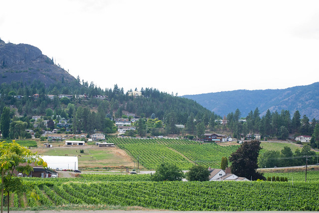 Overlooking Wineries | Okanagan, Canada