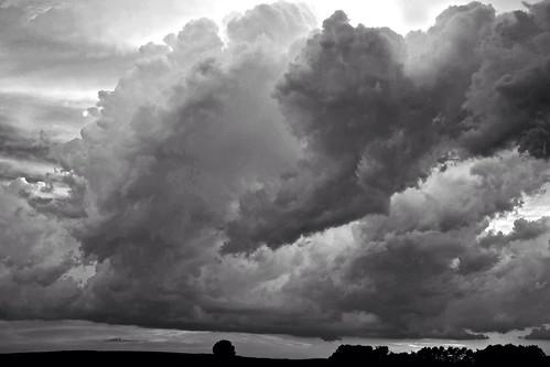 Storm BW