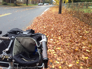 Leaves in bike lane_