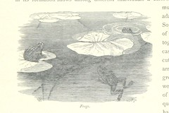 Image taken from page 200 of 'The Thames from its Source to the Sea ... Illustrated with ... engravings ... and ... etchings, etc'