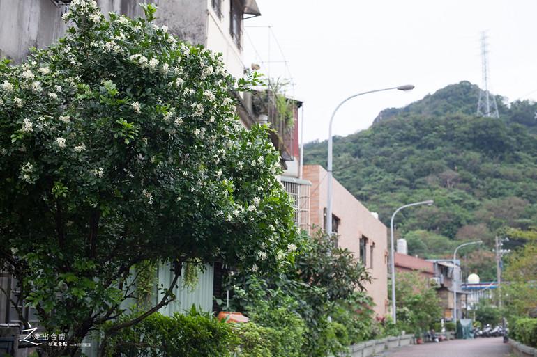 台南私藏景點--基隆三德沙茶牛羊肉店 (11)