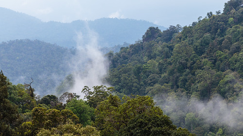 mist mountains clouds forest canon highlands tram hills adobe malaysia cablecar kualalumpur selangor lightroom 6d gentinghighlands batangkali canon6d resortsworld lightroom5