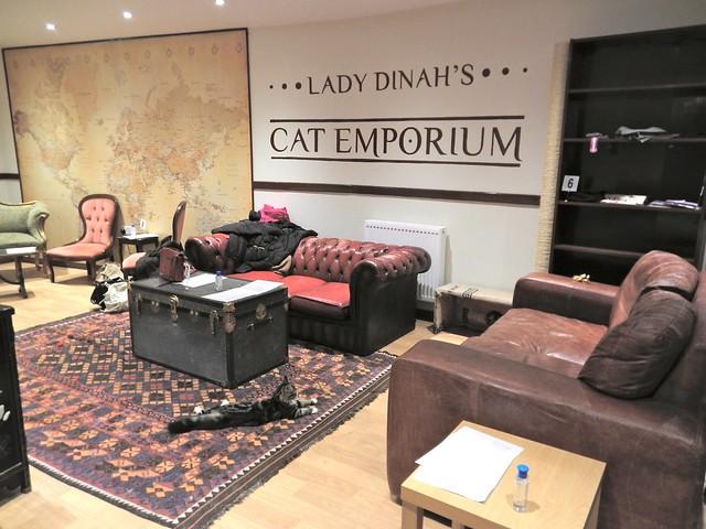 Lady Dinah S Cat Emporium Menu