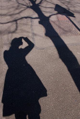 12978091564 a5da8e8ab7 La silhouette