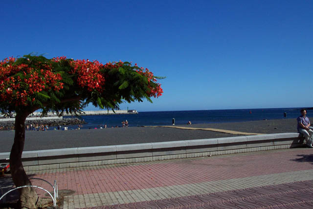 Playa de San Sebastián de La Gomera. © Paco Bellido, 2003