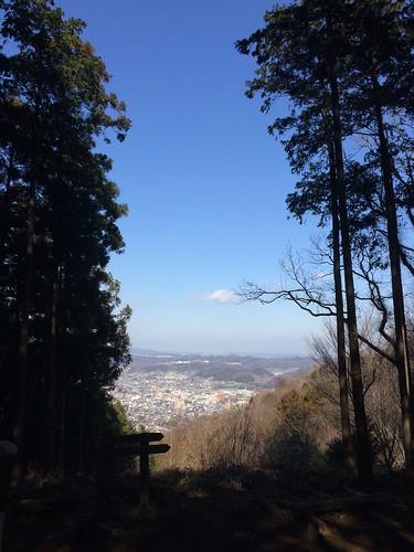仙元山トレラン