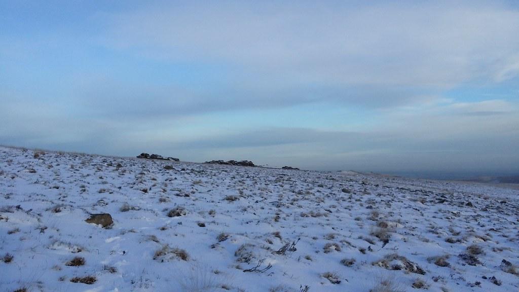 Wild Tor #sh #dartmoor