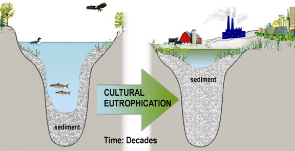 Cultural_Eutrophication