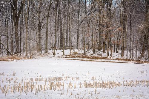 winter snow unitedstates indiana lynn waynecounty waynet