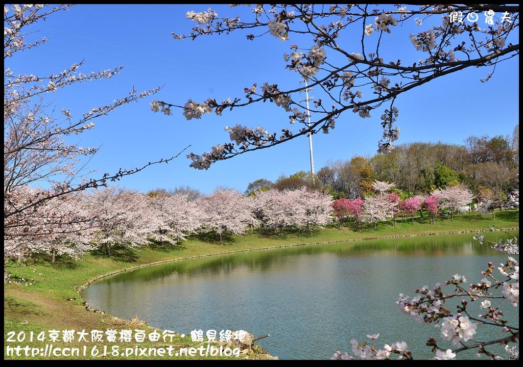 2014京都大阪賞櫻自由行.鶴見綠地DSC_1239