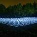 200 light orbs by 200 Orbs