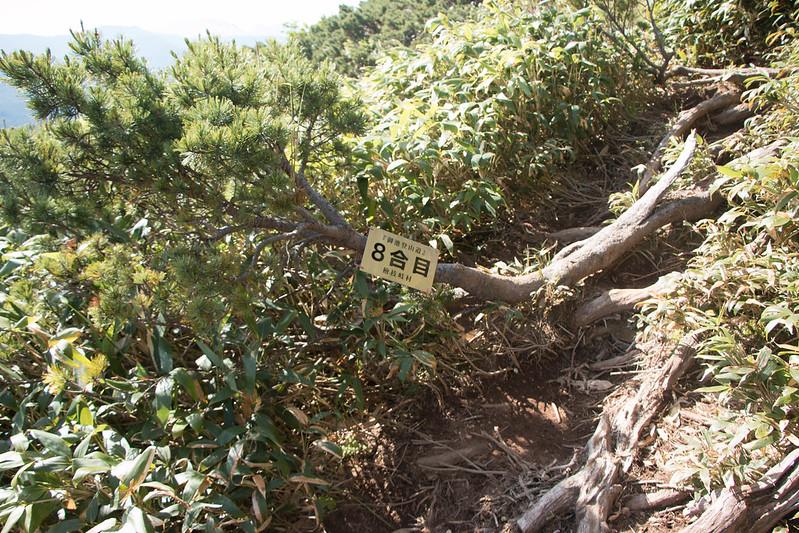 20150712-燧ヶ岳-0472.jpg