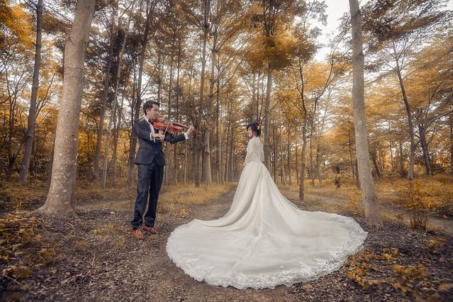 27605246056 10cca88d0b z 自助婚紗如何選擇?大方向小細節要注意!