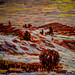 Alexei Jawlensky - Fussen VI - Snow over the Health, 1905 at San Diego Museum of Art - San Diego CA
