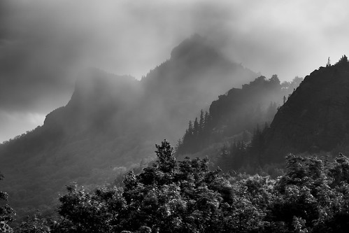 Shrouded in clouds:Grandfather Mountain NPW 6-1-2013 148