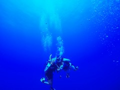 Belize Dive Certification Package