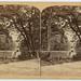 Wissahickon Creek by Library Company of Philadelphia