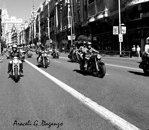 Harley Davidson Km 0