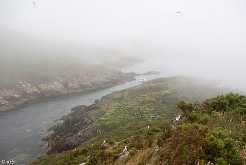 Canal entre Sisarga Grande á esquerda e a A Malante by xanesmelle