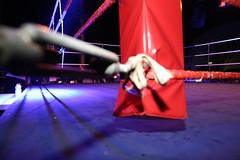 Traditionsturnier des Box- Verband Sachsen