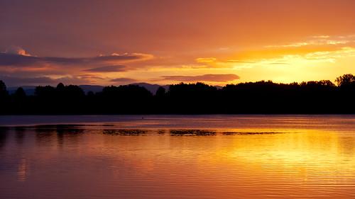 sky sun lake color water sunrise germany deutschland rays sonnenaufgang sonnenstrahlen farben niedersachsen seerosen seeburg seeburgersee ef70200mmf4lisusm canoneos5dmarkii lakeseeburg