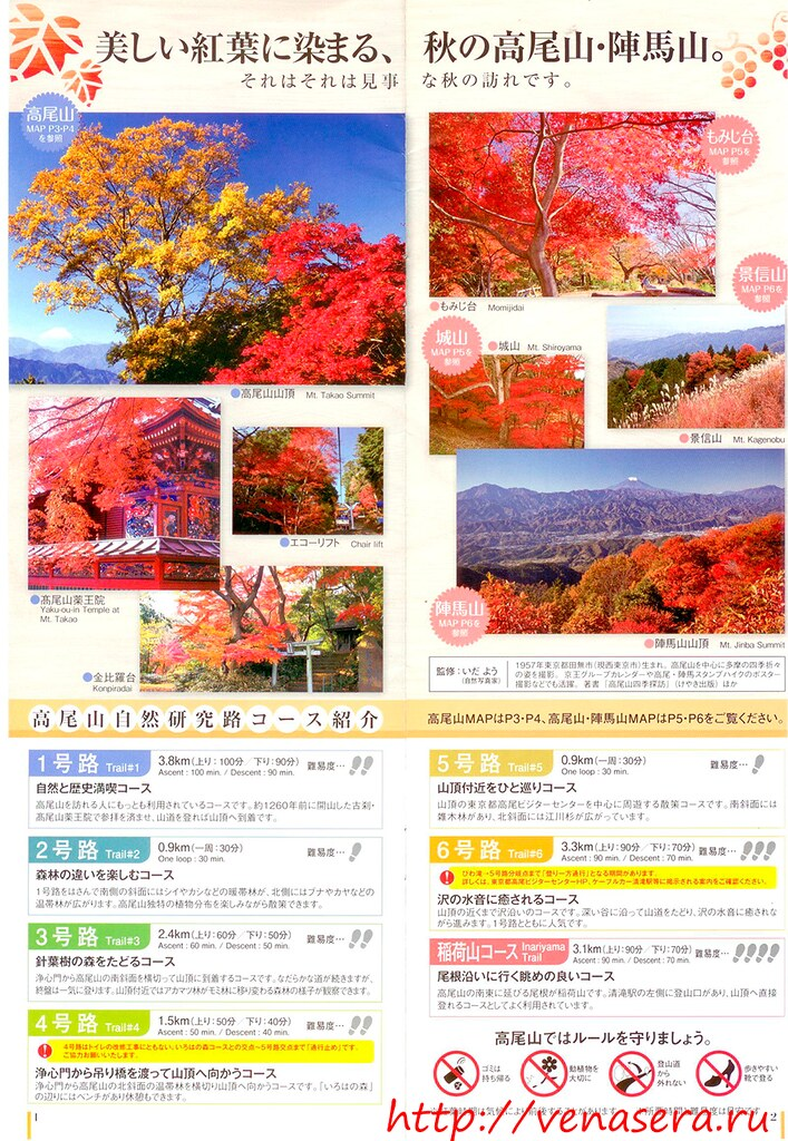 Гора Такао - Момидзи