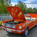 A 1965 Ford Mustang Convertible 02: Hood & Trunk Open by AvgeekJoe