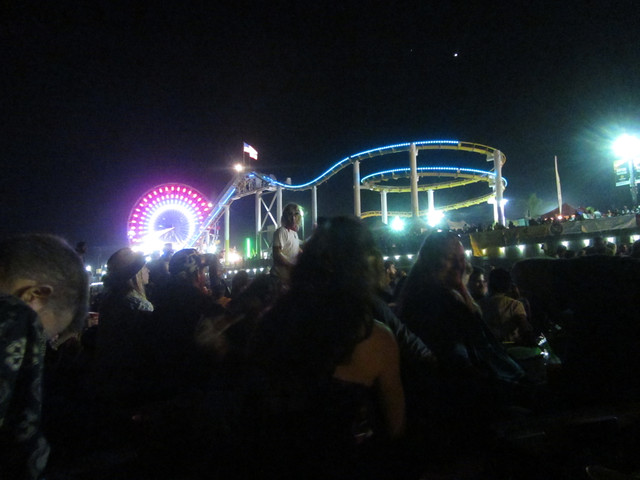 roller coaster and ferris wheel