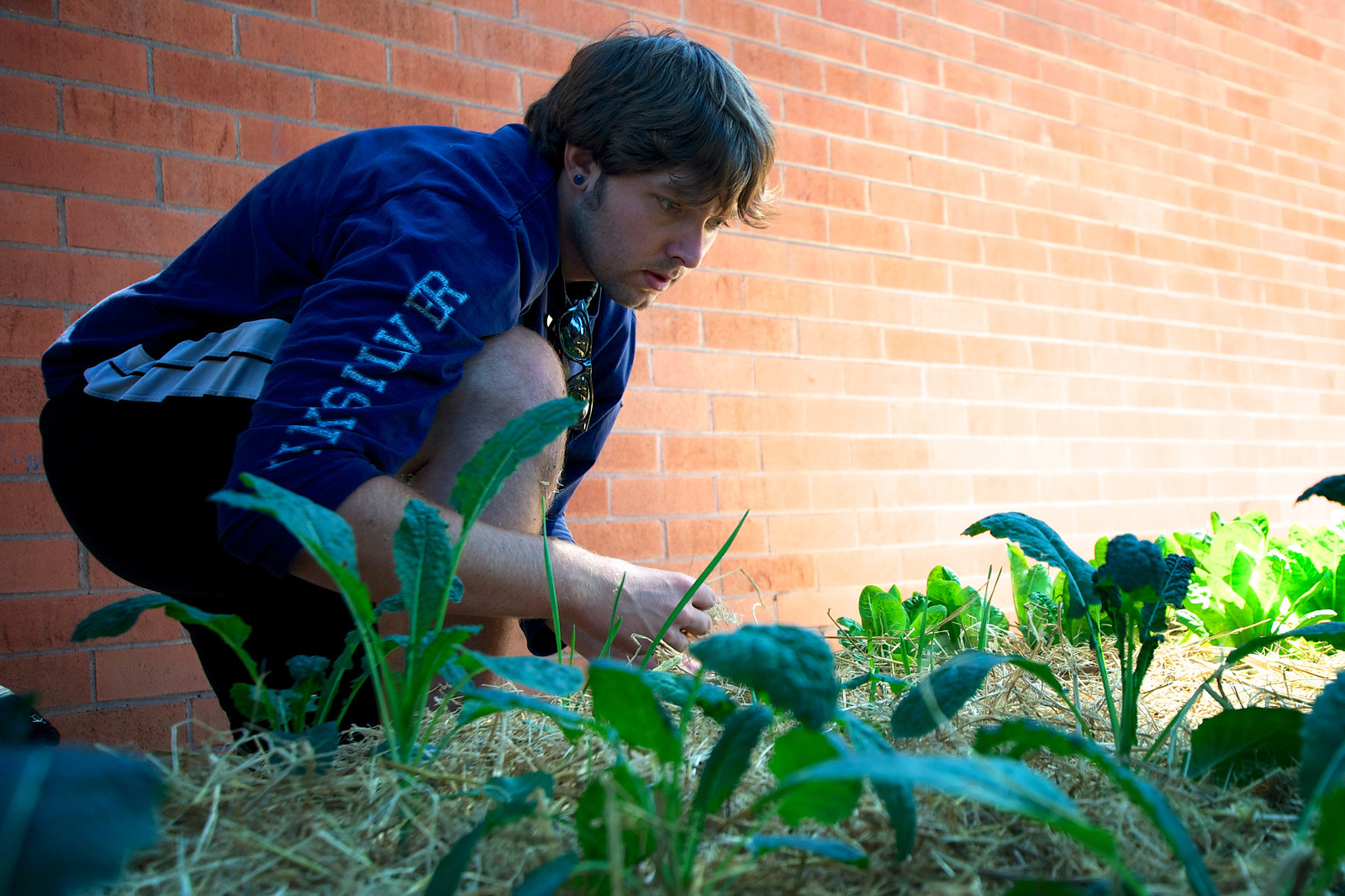 Michael Todd works on the community garden behind Mary Park Hall Sunday Sept. 15. Photo by Kate O'Neal / Xpress.