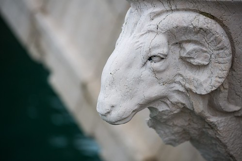 Ram's Skull Statue, Arsenale Venice by flatworldsedge