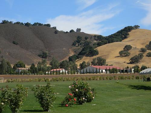 california view hills