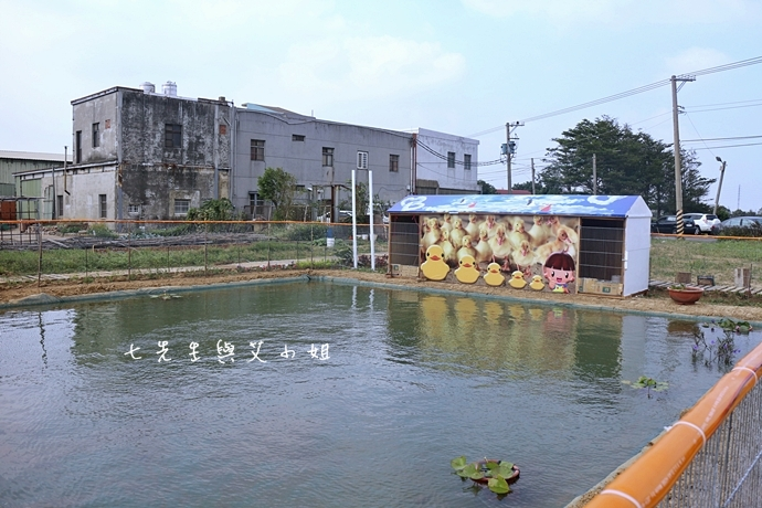 8 桃園縣地景廣場藝術節 黃色小鴨