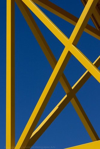 blue sky yellow canon winterfire riograndebiopark winterfirephotographicarts