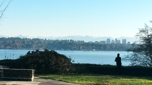 Bellevue view by christopher575