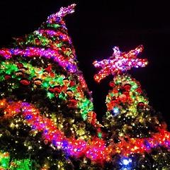 The night before Christmas #christmastree #christmaslights