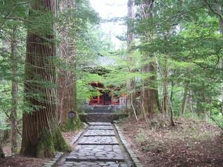 滝尾神社・境内(2)