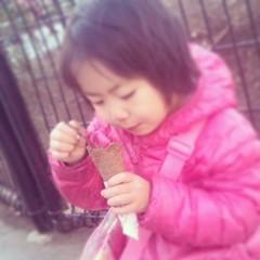 アイスは無事に画伯の胃の中へ。喜んでくれた!
