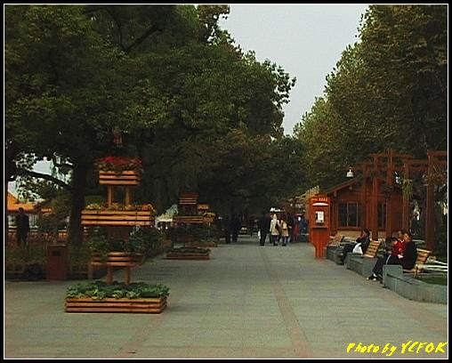 杭州 西湖 (其他景點) - 035 (湖濱路的湖畔)